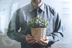 Success businessman holding vase plant,tree,front view,filter ef Royalty Free Stock Photos