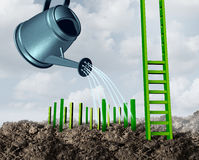 Success Development Growth. Concept as a watering can feeding water to growing green step pegs destined to complete a rising ladder structure of achievement and Royalty Free Stock Images