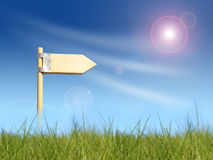 Success direction sign under sun Royalty Free Stock Image