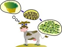 Success by empowering dairy cattle cow milk farm. You can use this image  cartoon for your advertise business activity or cover book or t-shirt design Royalty Free Stock Images