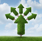 Success Expansion. Business concept as a tree shaped as an upward arrow with plant stems branching out and growing smaller arrows as a metaphor for increased Stock Photo