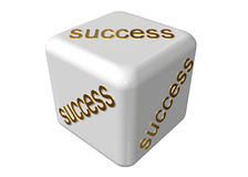 Success guaranteed. On a white background royalty free illustration