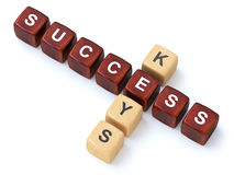 Success Keys crosswords Royalty Free Stock Images