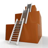 Success Ladders Shows Succeed Victor And Increase Stock Photo