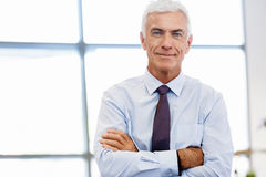 Success and professionalism in person. Businessman standing in office smiling at camera stock image