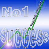Success profit Stock Photography