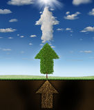 Success Program. Business concept as underground roots a green tree and clouds all shaped as a group of connected arrows pointing up to a glowing sun as a Stock Image