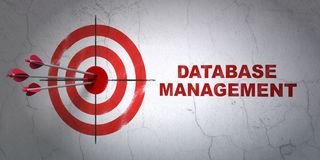 Programming concept: target and Database Management on wall background. Success Programming concept: arrows hitting the center of target, Red Database Management Stock Photos