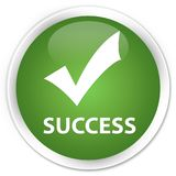 Success (validate icon) premium soft green round button Royalty Free Stock Photos