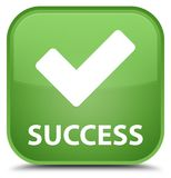Success (validate icon) special soft green square button Royalty Free Stock Images