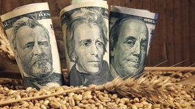 Successful agricultural production, making profit after harvesting wheat in America stock video