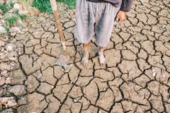Successful Agriculturist. In dry deserts Stock Images