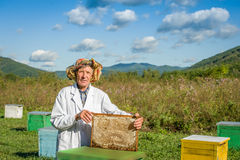 Successful bee-keeper Royalty Free Stock Image
