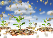 Successful business investments. Royalty Free Stock Image