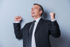 Successful business leader. Royalty Free Stock Photography