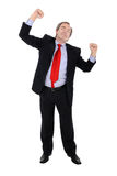 Successful business man cheering. Isolated on white stock image