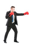 Successful business man fighting like a boxer Stock Photography