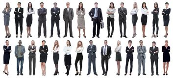 Successful business people isolated on white background stock photography