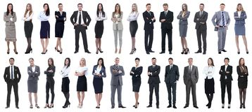 Successful business people isolated on white background stock photo