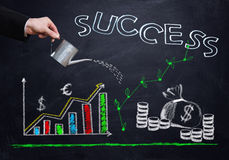 Successful business strategy Royalty Free Stock Photo