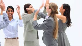 Successful business team. Together doing highfives and applauding against a white background stock video