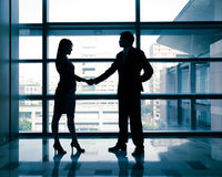Successful business woman and man handshaking Royalty Free Stock Images