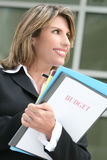 Successful Business Woman Planning Budget. Successful business woman or politician planning a budget Stock Photo