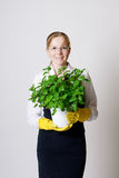 Successful business woman. With a potted plant in the hands Royalty Free Stock Image