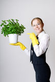 Successful business woman. With a potted plant in the hands Stock Photos