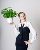 Successful business woman. With a potted plant in the hands Royalty Free Stock Photo