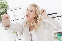Successful business woman - smiling face Stock Photos