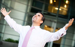 Successful businessman Royalty Free Stock Photography