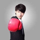 Successful businessman with boxing gloves Stock Photography