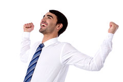 Successful businessman with clenched fists Royalty Free Stock Image