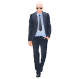 Successful businessman - isolated Stock Photo
