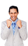 Successful businessman punching the air Stock Photos