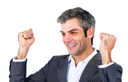 Successful businessman punching the air Stock Images