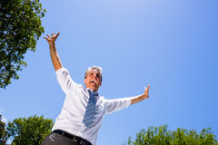 Successful businessman screaming Royalty Free Stock Photo