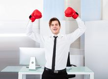 Successful businessman wearing boxing gloves Royalty Free Stock Image