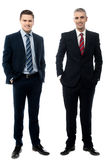 Successful businessmen posing in style Royalty Free Stock Images