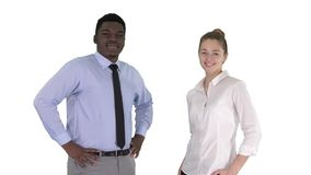 Successful businesspeople, business team posing on white background. stock video