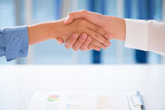 Successful collaboration. Close-up of human handshaking after successful collaboration royalty free stock image