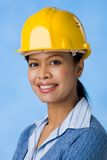 Successful engineer Royalty Free Stock Image