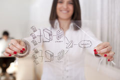 Successful firewall security solution Royalty Free Stock Photo