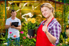 Successful gardeners florists are own business. In the implementation of flowers Royalty Free Stock Photo