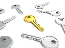 Successful golden key in others metallic keys Royalty Free Stock Photos