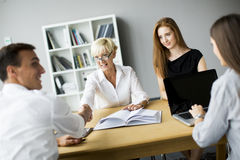 Successful group of business people working on plans Stock Images