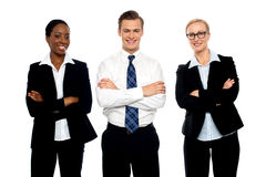 Successful happy business team posing. With arms folded isolated on white Royalty Free Stock Images