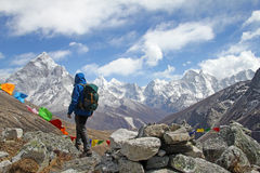 Successful hiker in Himalayas Royalty Free Stock Image