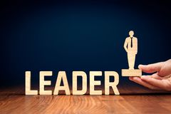 Successful leader. Successful team leader manager, CEO, market leader and another business leadership concepts royalty free stock image